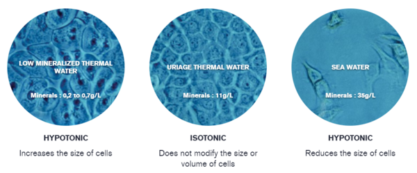 minerals-in-thermal-water